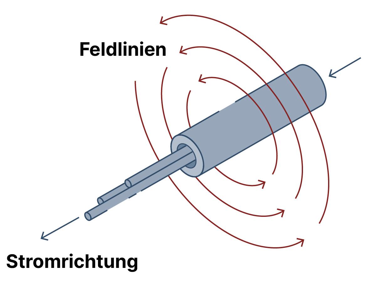 BfS - Elektrische und magnetische Felder